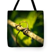 Love Takes Hold Tote Bag by Shane Holsclaw