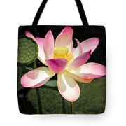 Lovely Lotus Blossom Tote Bag by Penny Lisowski