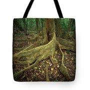 Lowland Tropical Rainforest Tote Bag by Ferrero-Labat