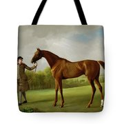 Lustre Held By A Groom Tote Bag by George Stubbs