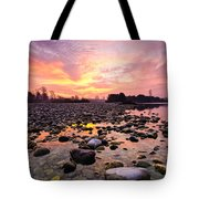 Magic Morning II Tote Bag by Davorin Mance
