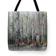 Magical Bayou Tote Bag by Carol Groenen