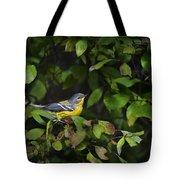 Magnolia Warbler Tote Bag by Christina Rollo