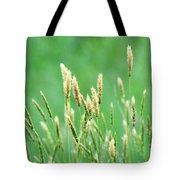 Make A Joyful Sound Tote Bag by Rebecca Sherman