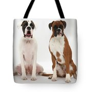 Male Boxer With Female Boxer Dog Tote Bag by Mark Taylor