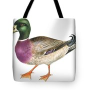 Mallard Tote Bag by Anonymous