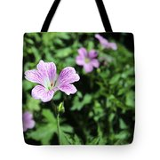 Mallow Cheeses Tote Bag by Paul Fell