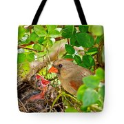 Mama Bird Tote Bag by Frozen in Time Fine Art Photography