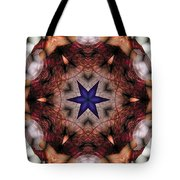 Mandala 14 Tote Bag by Terry Reynoldson