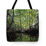 mangrove forest in Costa Rica 2 Tote Bag by Rudi Prott