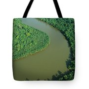 Mangrove Rhizophora Sp In Mahakam Delta Tote Bag by Cyril Ruoso