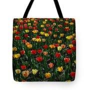 Many Tulips Tote Bag by Raymond Salani III