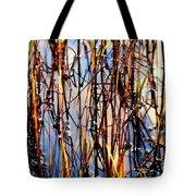 Marshgrass Tote Bag by Karen Wiles