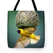 Masked Weaver At Nest Tote Bag by Johan Swanepoel