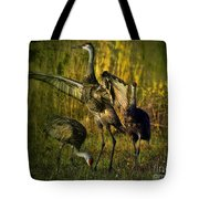 May I Have This Dance Tote Bag by Lianne Schneider