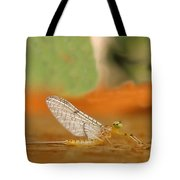 Mayfly Art Tote Bag by Thomas Young