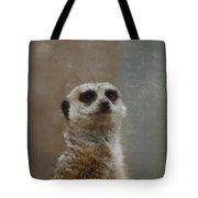 Meerkat 5 Tote Bag by Ernie Echols