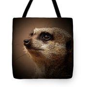 Meerkat 6 Tote Bag by Ernie Echols