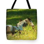 Meet Me At The Fence Tote Bag by Feva  Fotos