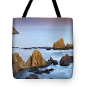 Mermail Reef Tote Bag by Guido Montanes Castillo