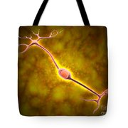 Microscopic View Of A Bipolar Neuron Tote Bag by Stocktrek Images