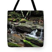 Mini Waterfalls Tote Bag by Kaye Menner