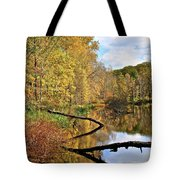 Mirror Mirror On The Floor Tote Bag by Frozen in Time Fine Art Photography