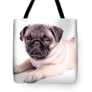 Miss You Tote Bag by Edward Fielding