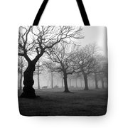 Mist In The Park Tote Bag by Mark Rogan
