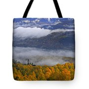 Misty Day In The Cairngorms Tote Bag by Louise Heusinkveld
