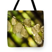 Money On Trees Tote Bag by Christi Kraft