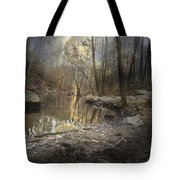 Moon Camp Tote Bag by Betsy C  Knapp