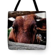 Mooo I See You Tote Bag by Todd and candice Dailey