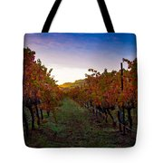 Morning At The Vineyard Tote Bag by Bill Gallagher