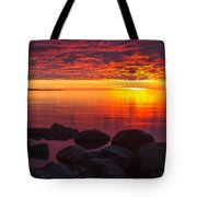 Morning Glow Tote Bag by Mary Amerman