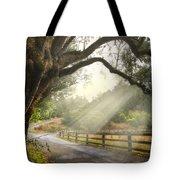 Morning Light Tote Bag by Debra and Dave Vanderlaan