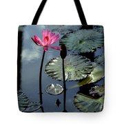 Morning Light Tote Bag by Karen Wiles