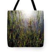 Morning Light Of God Tote Bag by Karen Wiles
