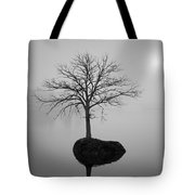 Morning Tranquility Tote Bag by Dave Gordon
