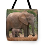 Mother And Calf Tote Bag by Bruce J Robinson