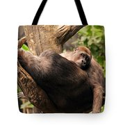 Mother And Youg Gorilla Sleeping In A Tree Tote Bag by Chris Flees