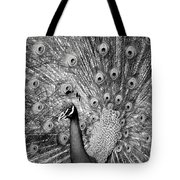 Mother Natures Fireworks Tote Bag by Karen Wiles