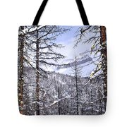 Mountain Landscape Tote Bag by Elena Elisseeva