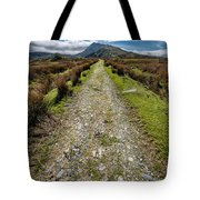 Mountain Track Tote Bag by Adrian Evans