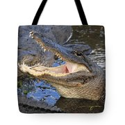 Mouth In The Middle Tote Bag by Adam Jewell