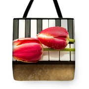Musical Interlude Tote Bag by Edward Fielding