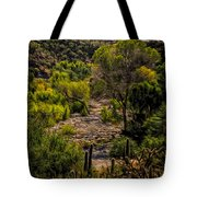 Mystic Wandering Tote Bag by Mark Myhaver