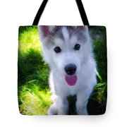 Nanook Of The North Tote Bag by Bill Cannon