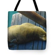 Napping Sea Lion Tote Bag by Jeff Swan