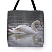 Natural Beauty Tote Bag by Riad Belhimer